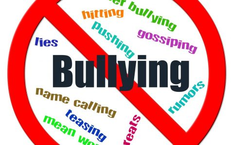 Bullying: What Can We Do to help?