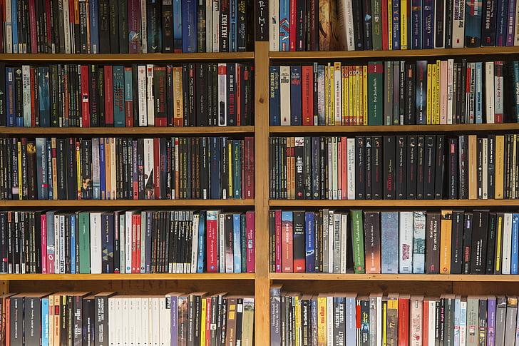https://i0.hippopx.com/photos/50/511/664/book-books-paperback-used-books-preview.jpg
